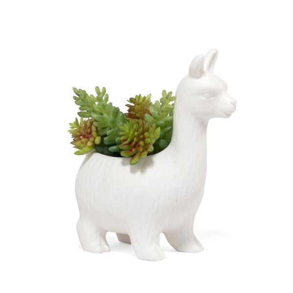 KIKKERLAND PLANTER LLOYD THE LLAMA