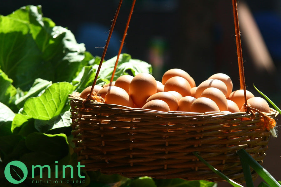 Are Eggs Healthy? Read About the Myths and Truths