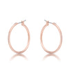 Small Rosegold Hoop Earrings