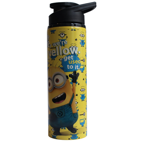 Silver Buffalo Universal Despicable Me Stainless Steel Water Bottle, 25-Ounces