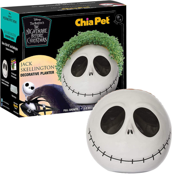 The Nightmare Before Christmas- Jack Skellington with Seed Pack Chia Pet