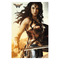 Wonder Woman Figure with Shield Poster - Kryptonite Character Store