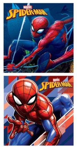 Marvel Spider-man - square 6'' x 6'' 2 pieces Canvas
