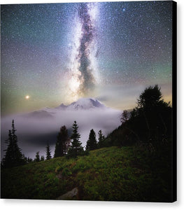 Dreamy - Mt. Rainier From Silver Forest Trail - Canvas Print