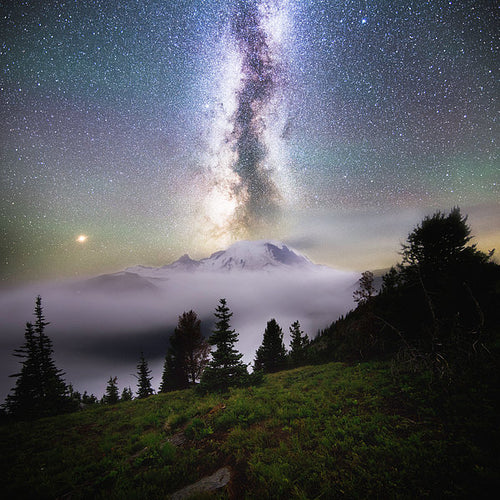 Dreamy - Mt. Rainier From Silver Forest Trail - Art Print