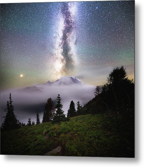 Dreamy - Mt. Rainier From Silver Forest Trail - Metal Print