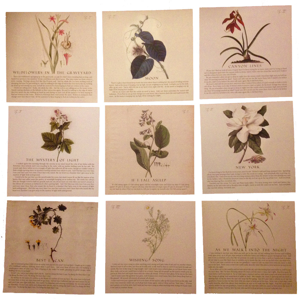 Botanical Lyric Set