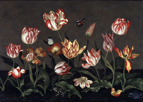 Why Are Tulips Common In Dutch Art?