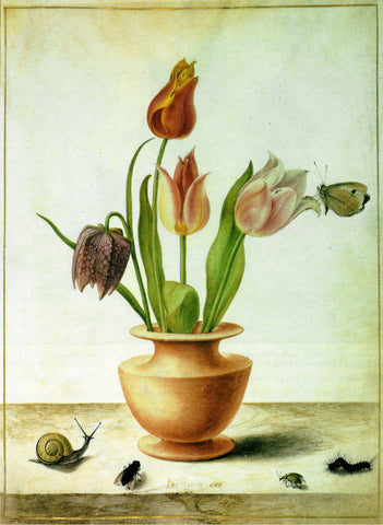 Amsterdam Tulip Museum Tulip Lovers Tulip Fanatics Vase With Tulips And Insects Privacy Policy Bottom