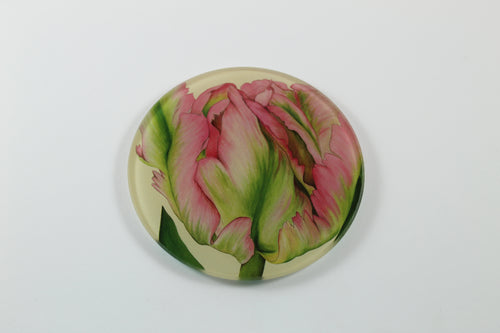 Amsterdam Tulip Museum Green Wave Tulip Jaci Hogan Glass Coaster