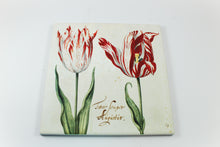 Amsterdam Tulip Museum Semper Augustus Tulip On White Ceramic Hot Plate Trivet Table Mat