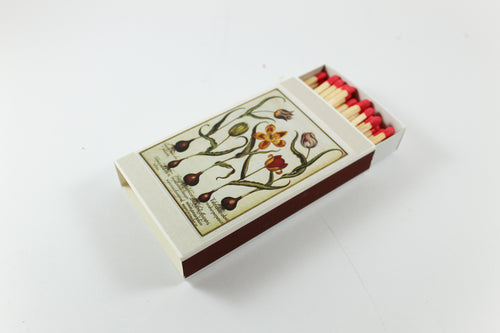 Tulip Catalog Amsterdam Tulip Museum Match Box Matches