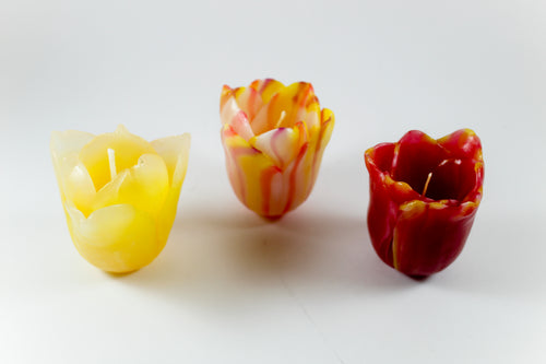 Amsterdam Tulip Museum Hand-made Tulip Shaped Wax Candle
