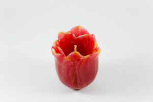 Amsterdam Tulip Museum Hand-made Tulip Shaped Wax Candle Red