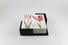 Amsterdam Tulip Museum Semper Augustus Tulip On White Ceramic Coaster Set