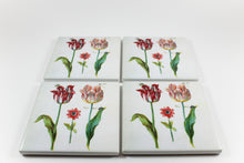 Amsterdam Tulip Museum Jacob Marrel Tulips And Insects Painting Ceramic Coaster Set