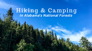 Hiking and Camping in Alabama's National Forests