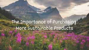 The Importance of Purchasing More Sustainable Products
