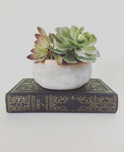 Concrete Planter with Copper Rim