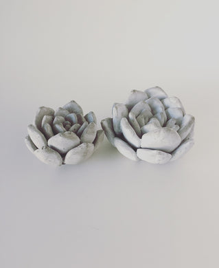 Decorative Concrete Succulents
