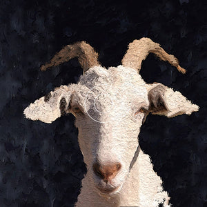 "Jana Latham- ""White Goat""- animals"
