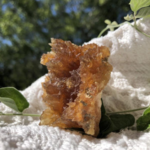 Amber Calcite Cluster UV Reactive