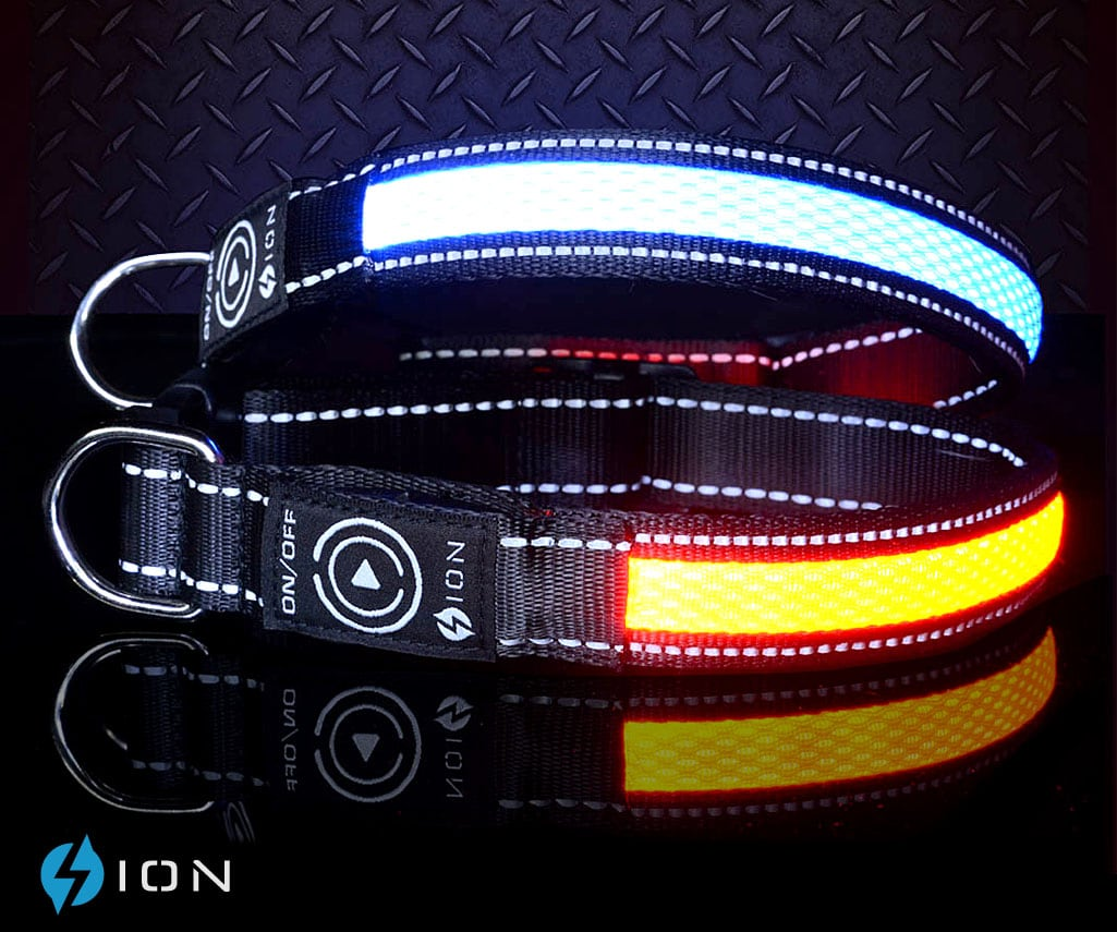 australian-light-up-dog-collars