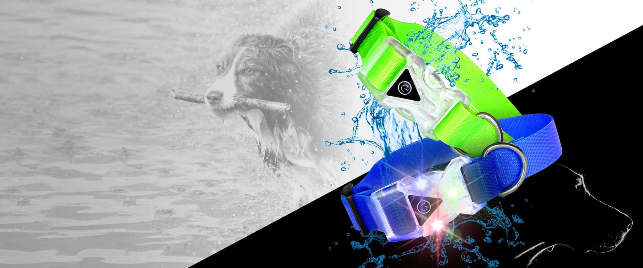 light-up-waterproof-dog-collars