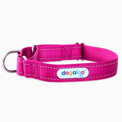 sighthound-whippet-collars