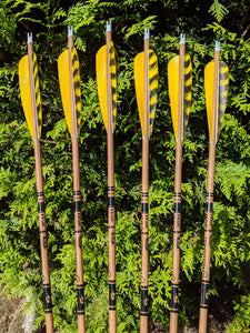 Standard Gold Tip Traditional Carbon Arrows