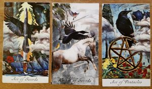 General Three Card Crow Tarot Reading - Friday April 27th