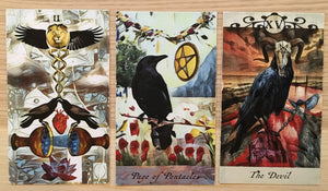 General Three Card Crow Tarot Reading - Monday June 18th