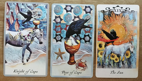 Crow Tarot Reading -