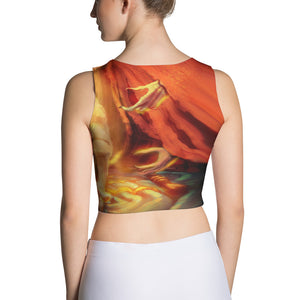 Stage of Reality Deluxe Cut & Sew Crop Top