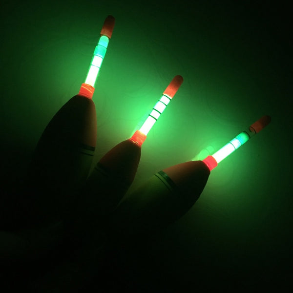 2 Pcs/Lot 10g 20g 30g EVA Luminous Fishing Float Long Vertical Night Lighting Fishing Floats Bobber