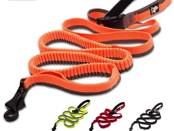 Truelove Dog Running Bungee Leash Hand-held Waistworn Adjustable Nylon Elastic Retractable Dog Leads for Running Jogging Walking