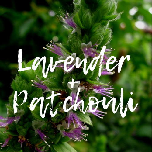 Lavender + Patchouli Wax Melts