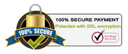 100% Secure payment. All the data is secured