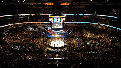 Sports Industry Meet Cannabis - The UFC & CBD.