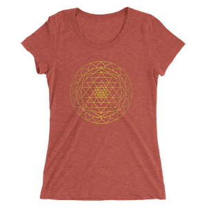 Prosperity Consciousness: Ladies' short sleeve t-shirt