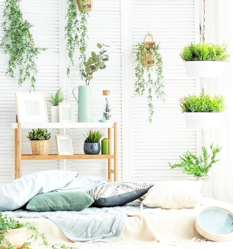 Room with plants and a bed