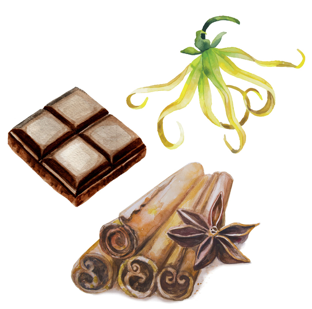 Dark Chocolate + Cinnamon + Ylang Ylang