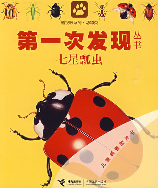 First Discovery Animals Series: Ladybugs and Other Insects