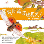 Oh! I am a Ladybug (Traditional Chinese)