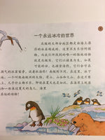 Little Scientist: The Land (Simplified Chinese)