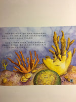 National Geographic Children Picture Book Series: Coral Reef