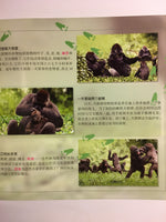 Animal Planet: My Life in the Wild – Gorilla