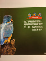 Angry Birds 50 True Stories of the Fed Up, Feathered, and Furious (Traditional Chinese)