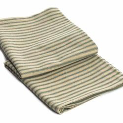 Green Ticking Dish Towel
