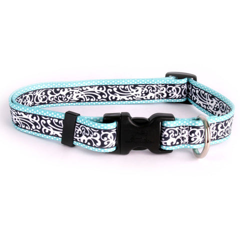 Yellow Dog - Chantilly Teal Collar